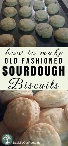 Flaky, Buttery, Old-Fashioned Sourdough Biscuits