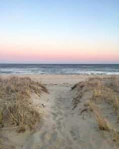 """1,400 mentions J'aime, 19 commentaires - Nantucket blACKbook (@nantucketblackbook) sur Instagram : """"As many of you know... I'm writing a memoir while living on the beach in Sconset this winter ...…"""""""