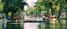 """Xochimilco - Mexico City, Mexico * Colorful """"trajinera"""" boats transport revelers along the canals and floating gardens of Xochimilco, a popular borough of Mexico City.  The watery gardens are remnants of an extensive lake and canal system developed by the Aztecs, who grew produce her on man-made reed islands."""