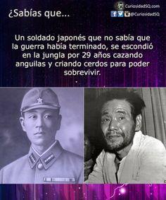 Soldado japonés que no sabía que la guerra había terminado, se escondió en la jungla por 29 años ~ ¿Sabías que?