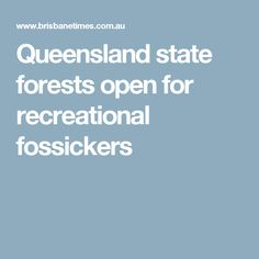 Queensland state forests open for recreational fossickers State Forest, State Government, Forests, Gems, Woods, Rhinestones, Gemstones