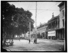 8. A view of Dauphin Street in Mobile, Alabama - 1901.