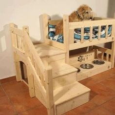 Amazing dog station!awwwwwllllllll!