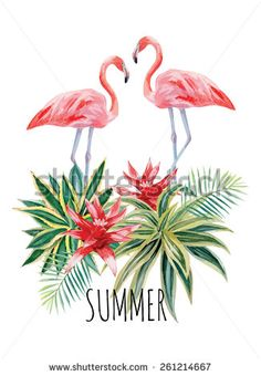 Exotic tropic bird pink flamingo with palm leaves and plant flower agave hand drawn watercolor. Print trendy flower vector illustration poster with the slogan summer