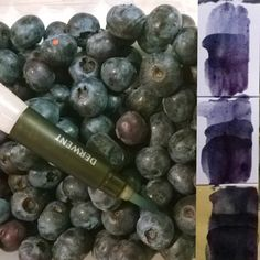 Watercolor different: the color tests for blueberry. The color intensity depends on paper type. ***  Diversamente acquerello:  prove cromatiche con Il succo di mirtilli,  la gamma dei blu di varia intensità in base al tipo della carta e numero delle velature. #art #watercolordifferent #watercolor #blueberry #brush #artist #Italy #paper #diversamenteacquerello #arte #acquerello #tavolozza #mirtilli #frutti #pennello #другаяакварель #акварель #Италия #черника #кисть #сок #бумага #arts_help