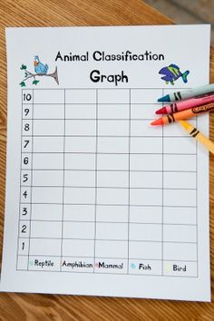 Animal classification graph. student pets or bucket of animals at a center