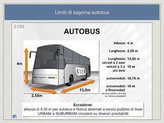Autoscuola Stop: Patenti Superiori: limiti di sagoma per Autobus