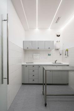 Cat Pet Shop, Dog Clinic, Vet Office, Pet Spa, Medical Office Design, Dog Salon, Hospital Design, Vet Clinics, Clinic Design