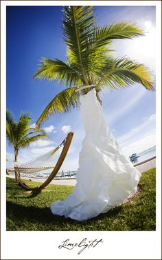 Real Wedding: Lani + Wes at Bimini Bay Resort and Marina, Bimini, Bahamas Michael Bay, Beautiful Love, Resorts, Real Weddings, Marriage, Wedding Photography, Island, Wedding Dresses, World