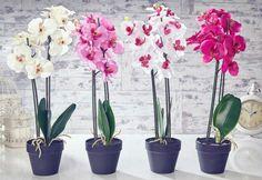 Dried & Artificial Flowers for sale Orchid Flower Plant, Orchid Flower Arrangements, Flower Pots, Artificial Flowers For Sale, Artificial Orchids, Outdoor Plants, Potted Plants, Outdoor Decor, Pink Orchids
