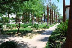 Legacy Villas Tranquil Landscaping with room to breath  http://www.flipkey.com/la-quinta-villa-rentals/p475646/