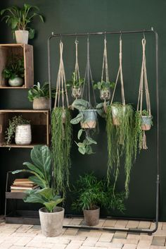 Urban Jungle is the latest decoration trend for your home .- Urban Jungle ist der neuste Dekorations-Trend für Dein Zuhause – egal ob im Woh… – Einrichtungsideen Urban Jungle is the latest decoration trend for your home – whether in the home … - Balcony Planters, Balcony Flowers, Balcony Garden, Planter Pots, Balcony Ideas, Decoration Entree, Decoration Plante, Garden Care, Plant Decor