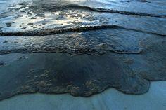 oil pollution - Google Search