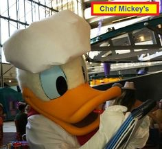 Donald Duck at Chef Mickey's, a character meal in Disney's Contemporary Resort at Disney World.  #DonaldDuck