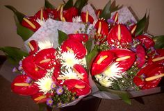 Mixed flower bouquet red Anthurium (AFG-Worldwide South-Africa) Flower Bouquets, Flowers, South Africa, Red, Floral Bouquets, Florals, Flower, Blossoms, Floral Swags