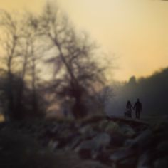 A walk in the fog #Vancouver iphoneography NikNaz K.  #instagram