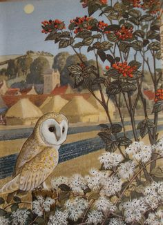 owl from the Ladybird book 'What  to Look for in Autumn' illustrated by Charles Tunnicliffe