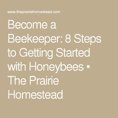 Become a Beekeeper: 8 Steps to Getting Started with Honeybees • The Prairie Homestead