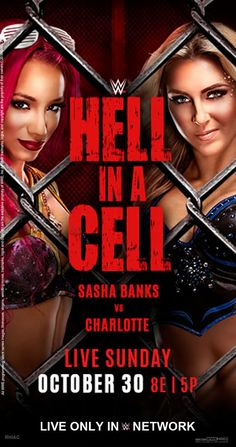 WWE Hell In A Cell 2016 Official  Poster by edaba7.deviantart.com on @DeviantArt