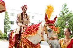 Lovely white horse for baraat http://www.maharaniweddings.com/gallery/photo/95439