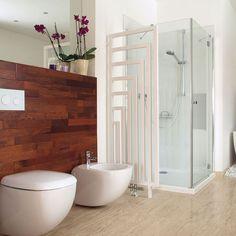 cool toilet/bidet/scheme