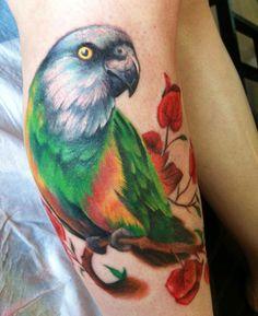 Senegal Parrot Tattoo
