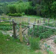 Bamboo gate ..