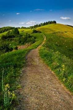 "the ""open field""- scene 8?  Altvogtsburg, Baden-Wurttemberg, #Denmark   Looking Ahead by andywon, via Flickr"