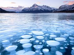 "This photo was taken at Alberta's Abraham Lake, where methane from decaying plant life rises to the surface and becomes trapped under ice, resulting in these bubbles. ""There's usually a seven-minute window every year to photograph them in the best conditions before snow or warm temperatures affect the lake. I've waited five years to photograph them in these conditions, trying and failing every year up until this year."" — @calsnape"