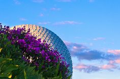 See what Natália Gusmão (nataliagusmao) found on We Heart It, your everyday app to get lost in what you love. Disney World Resorts, Walt Disney World Orlando, Walt Disney Co, Disney Love, Disney Magic, Disney Parks, We Heart It, Epcot Center, Spaceship Earth