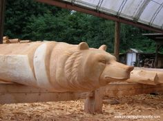 Special Features: Wood Carvings would be great to have some of these in Aust native animals for a log home build