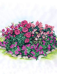 1. jalokurjenpolvi ´Brookside´ (5 kpl), 2. päivänlilja ´Minstrel Boy´ (5 kpl), 3. vaaleanpunainen syysleimu ´Eva Cullum´ (5 kpl), 4. kiinanpioni ´Monsiuer Jules Elie´ (3 kpl), 5. Värililja ´Lollypop´ (10 kpl).