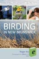 Uniquely situated smack dab on the migratory path from Greenland and the Canadian North to South America, New Brunswick boasts a broad range of habitats, making it an ideal destination for birds and birders alike - Birding in New Brunswick via Goose Lane Editions
