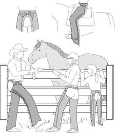 Western Show Chaps Or English Schooling Chaps Pattern