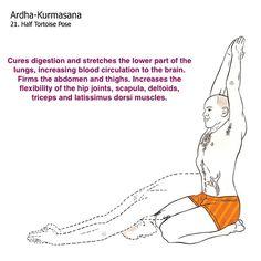 bikram yoga postures illustrated with real bodies Bikram Yoga Postures, Bikram Yoga Benefits, Ashtanga Yoga, Free Yoga Videos, Yoga Poses For Men, Yoga World, Yoga Anatomy, Yoga Quotes, Hot Yoga