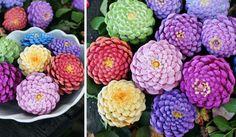 Dekorativní květiny vyrobené ze šišek