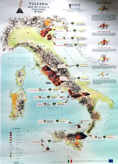 Large detailed map of Italy volcanic wines. Detailed Map Of Italy, Napa Valley Wineries, Wine News, Wine Education, Italy Map, Tuscany Italy, Italy Travel, Wine Guide, Regions Of Italy