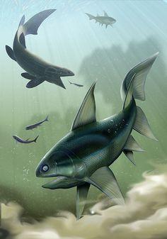 Devonian fish by Chris Tomlin