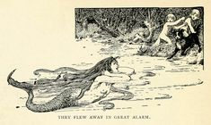 """""""They flew away in great alarm"""" - The Little Mermaid by Hans Christian Andersen, illustrated by Helen Stratton, 1899 Children's Book Illustration, Book Illustrations, Mermaids And Mermen, Fairytale Art, Merfolk, Mermaid Art, Gravure, Aesthetic Art, Drawing Reference"""