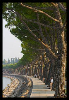 Peschiera Promenade through the eyes of flagman