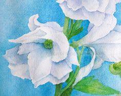 white flower on blue watercolor 8 x 10 archival print by carolsapp