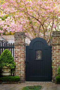 Painted wooden gate lights pink outdoors nature flowers trees tree black wood elegant garden yard blossoms gate