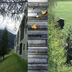 #vals #therme Instagram, Plants, Waltz Dance, Thermal Baths, Flora, Plant, Planting