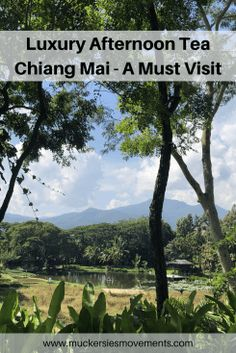 f5f1453fcf If you re looking for a Luxury Afternoon Tea in Chiang Mai