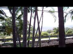 Kona By the Sea; Kona, Hawaii - Recorded on March 29, 2011 using a Flip Video camcorder.
