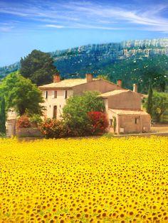 Sainte Maxime-France -Provence, Alpes, Côte d'Azur-