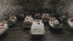 Chiharu Shiota to Represent Japan at the 2015 Venice Biennale