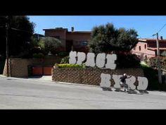 Spacebyrd on Earth - Lush Longboards