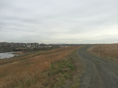 Top of the Erskine dump with the City in the distance