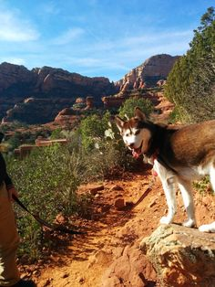 100 Places To See With Your Dog: Sedona in the Fall